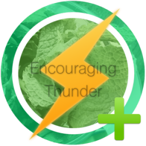 Encouraging Thunder Award